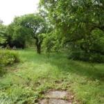 Pozemek Ohrobec